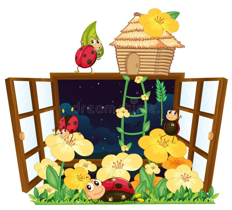 Pluskwy, ptaka dom i okno, ilustracja wektor