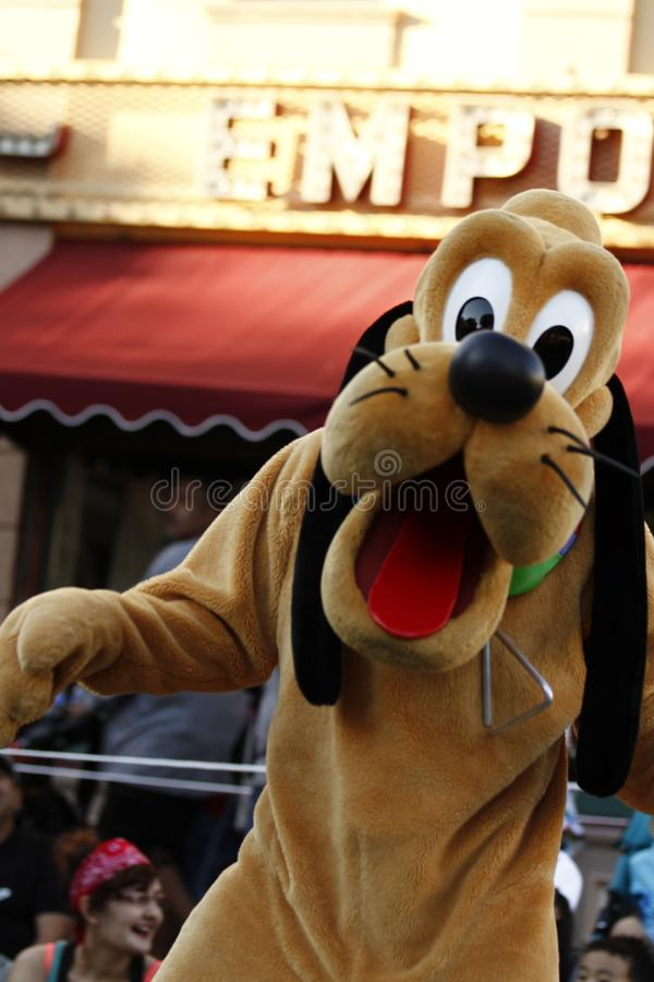 Pluto p? Disneyland royaltyfri bild