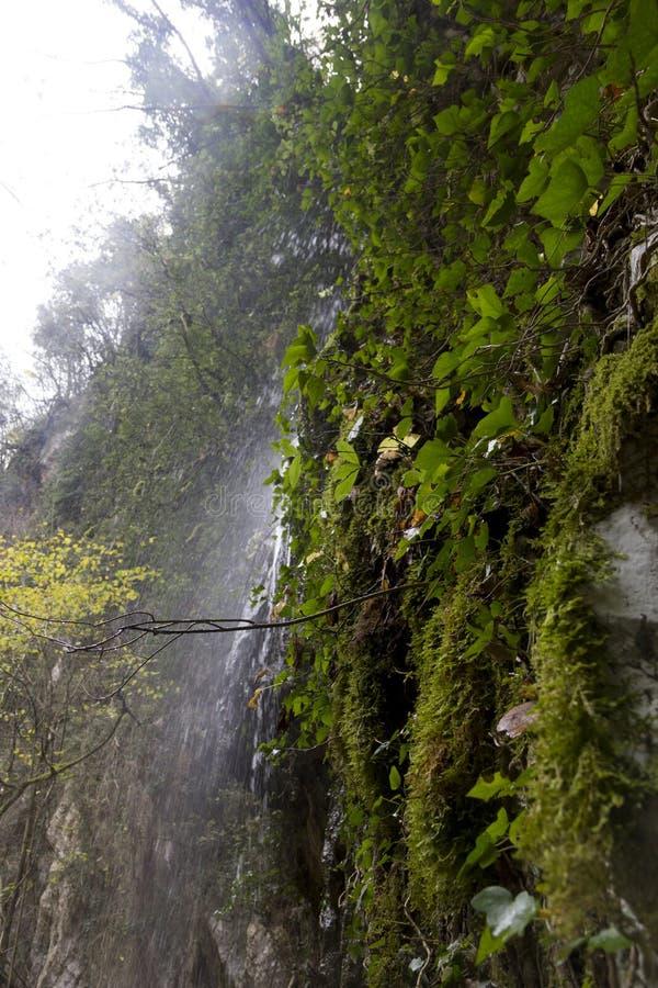 Pluvial vattenfall arkivbild