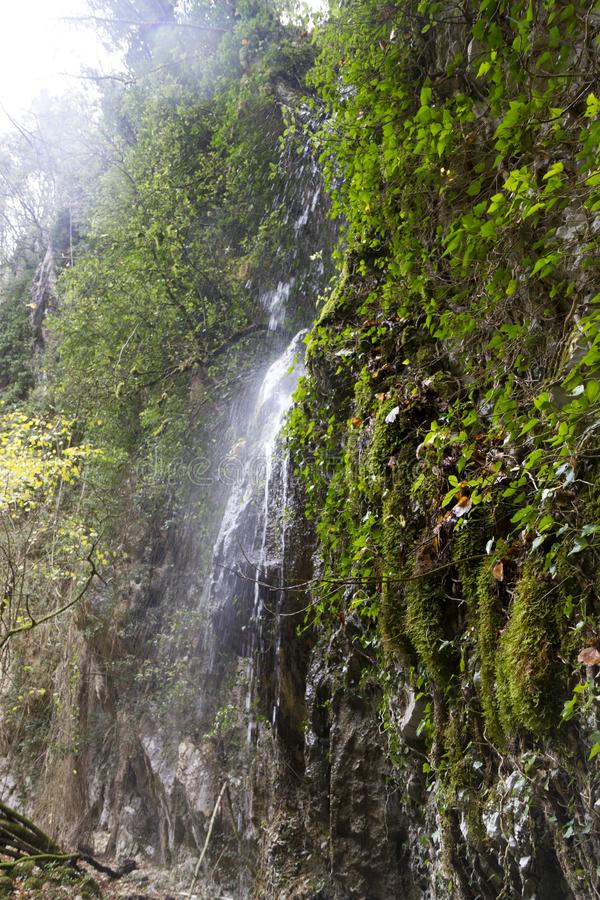 Pluvial vattenfall arkivfoto