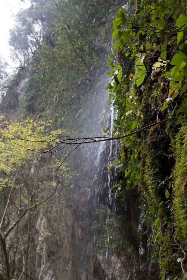 Pluvial vattenfall royaltyfri foto