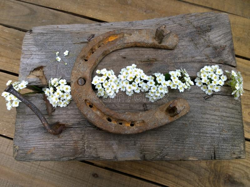Ply horseshoe with flowers on wooden background. Close-up stock photography