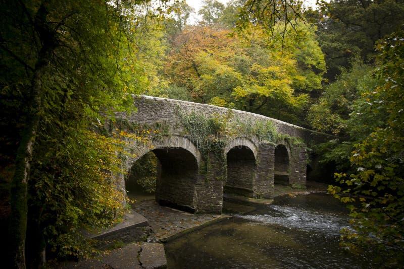 Plym most, Rzeczny Plym, Plym dolina, Dartmoor obraz royalty free