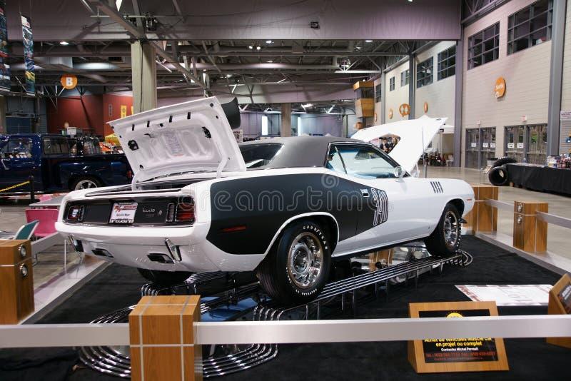 Plymouth Cuda royalty free stock image