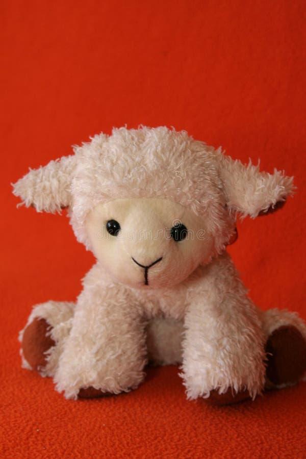 plysch för 2 lamb royaltyfri fotografi