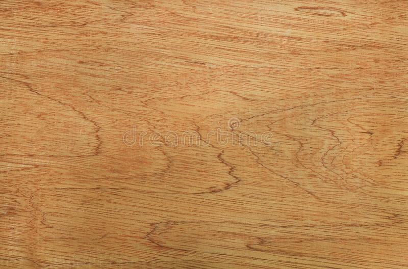 146 Bamboo High Resolution Natural Wood Texture Photos Free Royalty Free Stock Photos From Dreamstime
