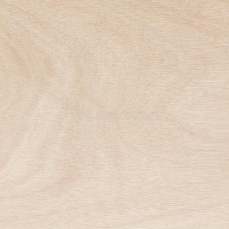 Plywood surface in natural pattern with high resolution. Wood grain texture background.  stock photo