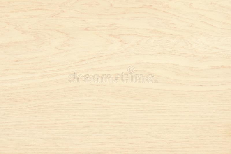 Plywood surface in natural pattern with high resolution. Wooden grained texture background vector illustration