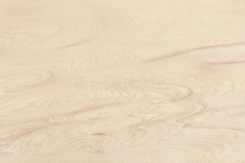 Plywood surface in natural pattern with high resolution. Wooden grained texture background stock photography
