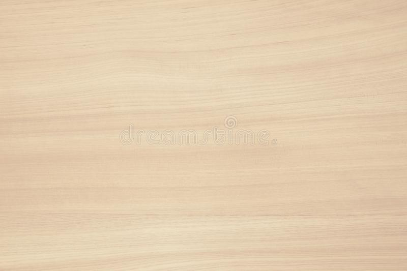 Plywood surface in natural pattern with high resolution. Wooden grained texture background.  royalty free stock images