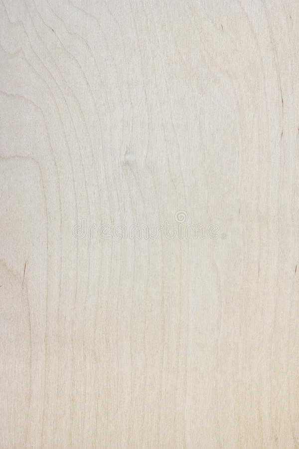 Plywood texture background. Blank, bright plywood texture background stock photography