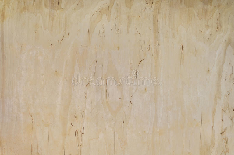 Plywood texture royalty free stock photography