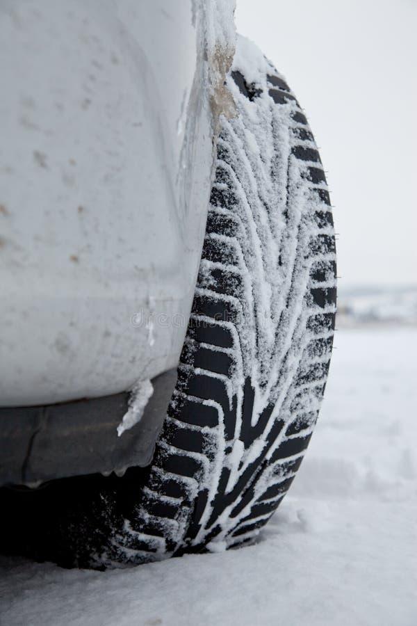 Pneus do inverno na neve foto de stock