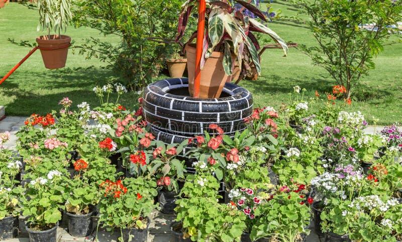 Pneus utilis s dans le jardin photo stock image 74081094 for Dans le jardin