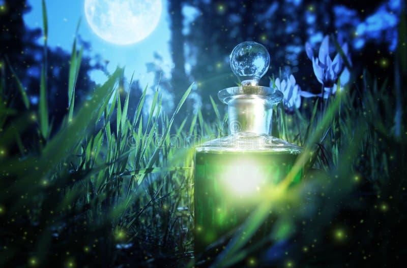 Poção feericamente mágica da poeira na garrafa na floresta fotografia de stock royalty free