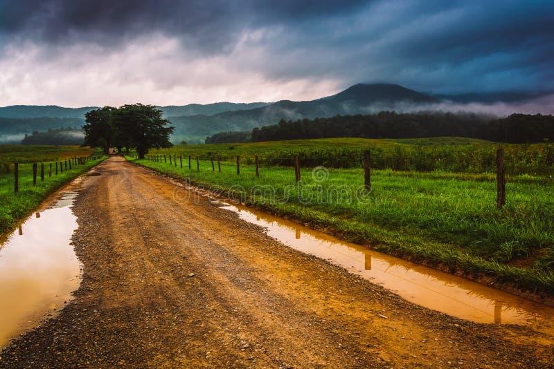 Poças em uma estrada de terra em uma manhã nevoenta na angra Cade, grande fotografia de stock royalty free