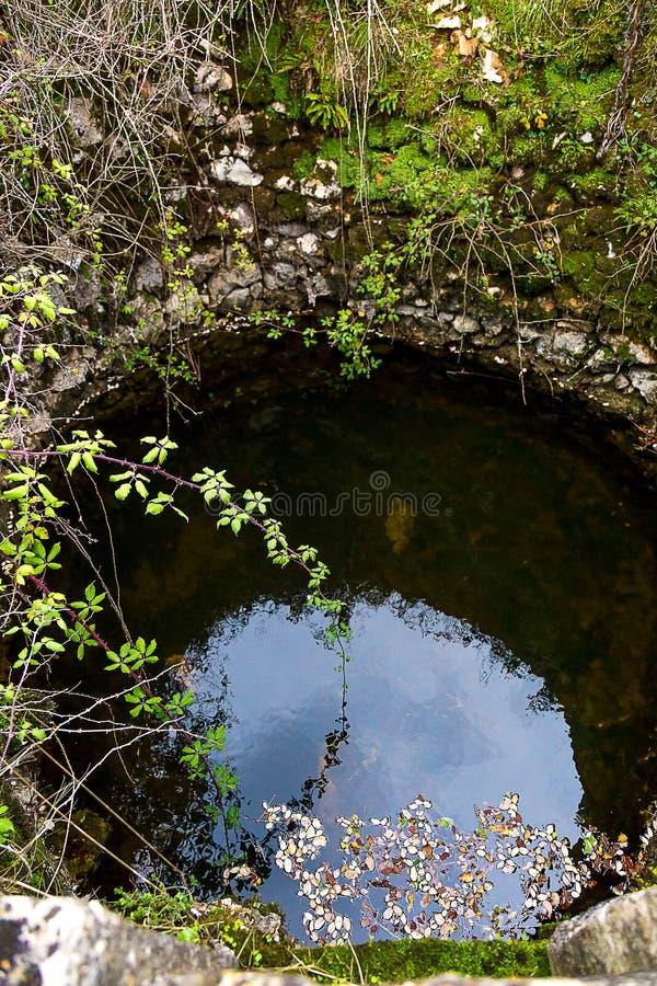 Poço de água velho, com as paredes cobertas por plantas fotos de stock royalty free