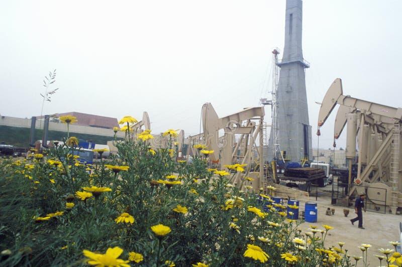 Poço de petróleo urbano em Torrance no condado de Delamo, CA imagem de stock