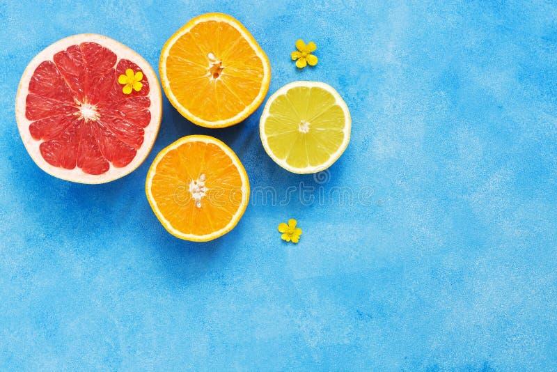 Połówka grapefruitowy, cytryna i pomarańcze, dekorujemy z małymi żółtymi kwiatami na błękitnym tle Widok od above, kopii przestrz zdjęcie royalty free