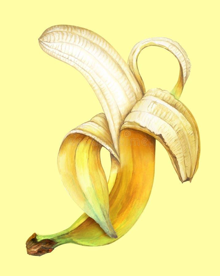 Połówka obrany banan na żółtym tle Ręka rysująca akwareli ilustracja royalty ilustracja