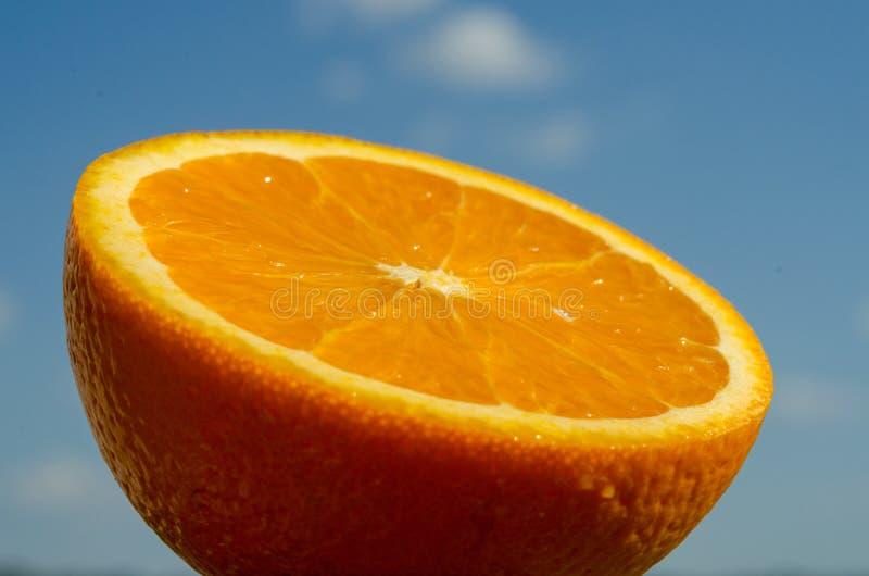 Połówka pomarańcze, cytrus w słońcu zdjęcie royalty free