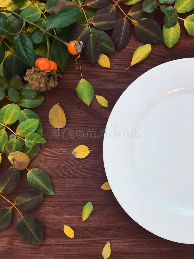Połówka pusty bielu talerz na brown drewnianej powierzchni zdjęcie stock