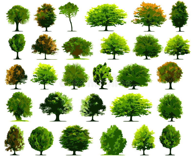 położenie drzew. royalty ilustracja