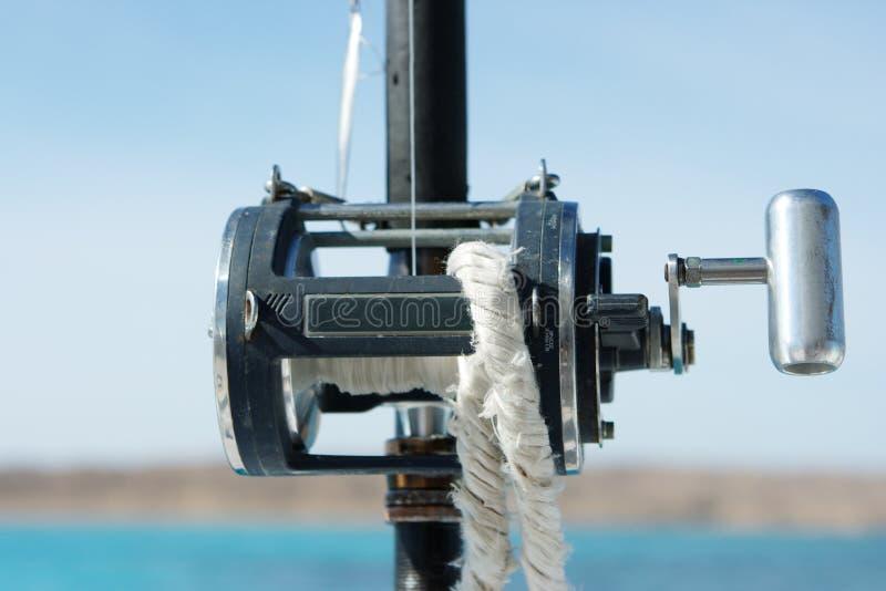 połowów prącia obrazy stock