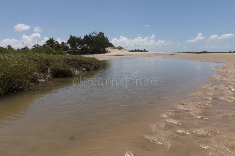 Południowa linia brzegowa - Natal, RN, Brazylia fotografia stock