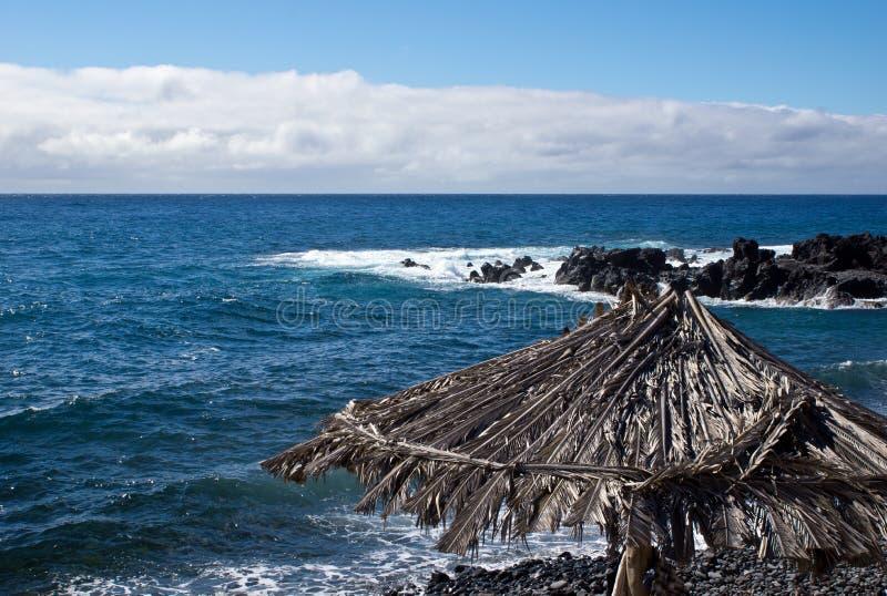 Południowe wybrzeże Madeira obraz royalty free