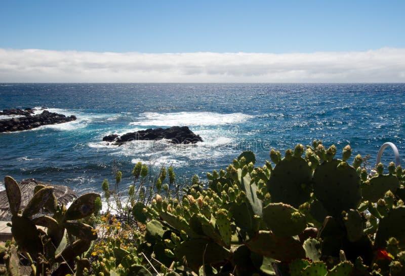 Południowe wybrzeże Madeira zdjęcia royalty free