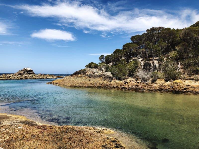 Południowy brzegowy nsw Australia fotografia royalty free