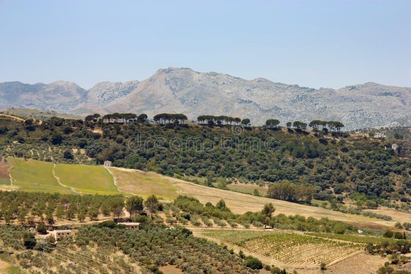 Południowy Hiszpania krajobraz zdjęcie stock