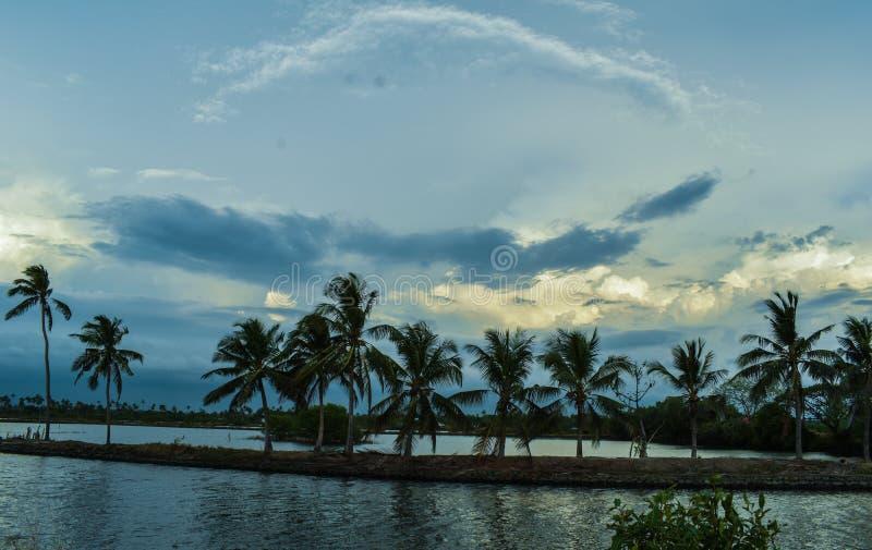 Południowy Kerala wioski wczesny poranek fotografia stock