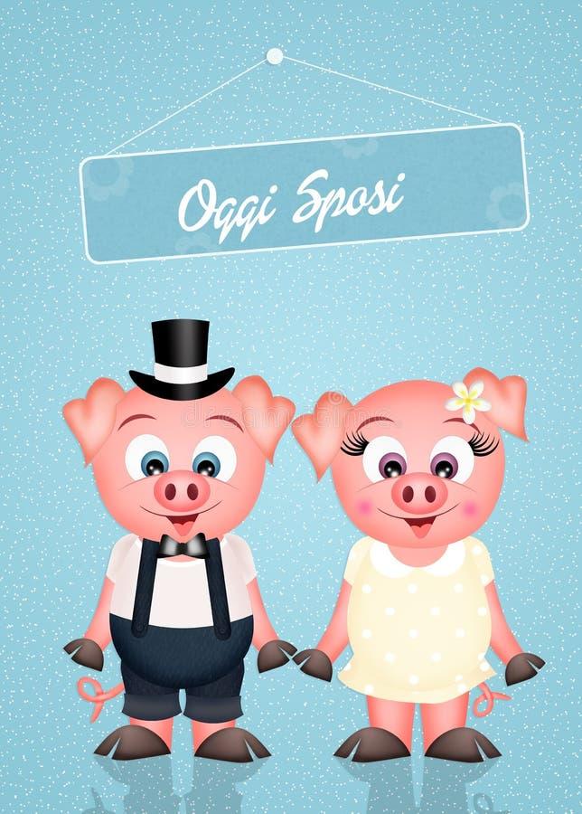Poślubiać świnie ilustracja wektor