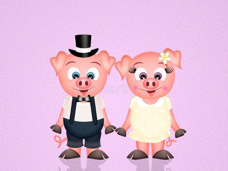 Poślubiać świnie ilustracji