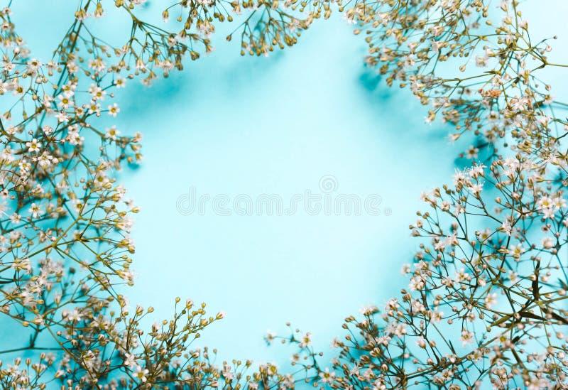 Poślubiający, lato pastelu tło Skład biali kwiaty na błękitnym tle zdjęcia stock