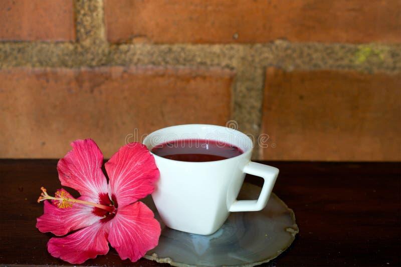 Poślubnik herbata na drewnianym stole zdjęcie royalty free