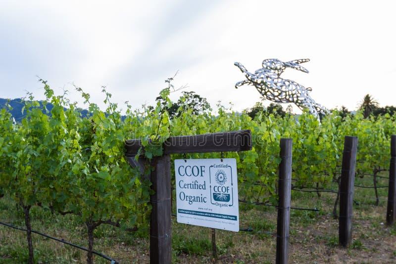 Poświadczający Organicznie wina zdjęcia stock