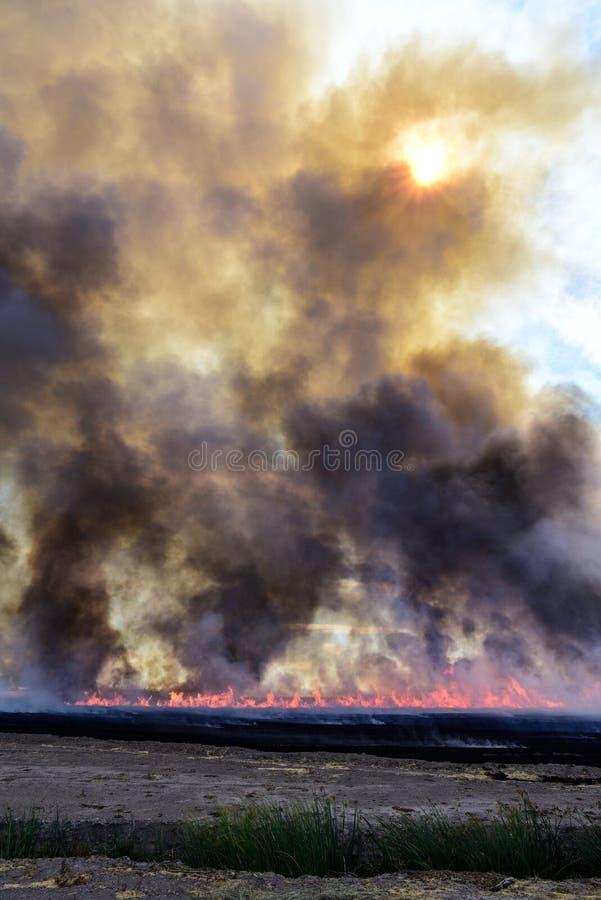 Pożarniczy dym i popióły zdjęcie royalty free