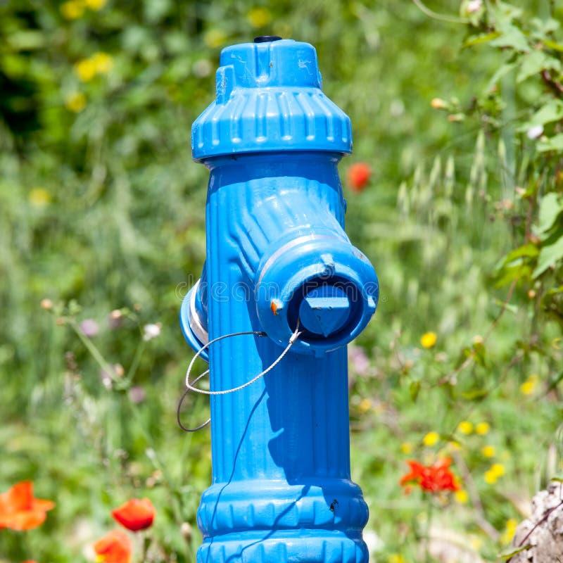 Pożarniczy hydrant w naturze fotografia royalty free