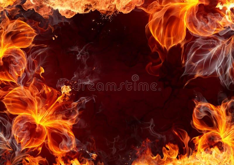 pożarniczy kwiat royalty ilustracja