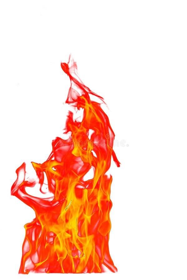 Pożarniczy płomień odizolowywający na białym odosobnionym tle - Piękny yel zdjęcia stock