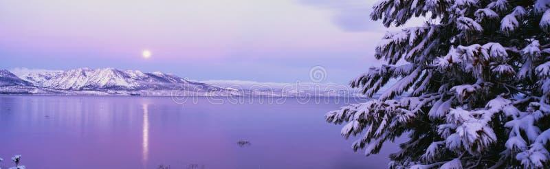 Po śnieżnej burzy jeziorny Tahoe fotografia royalty free