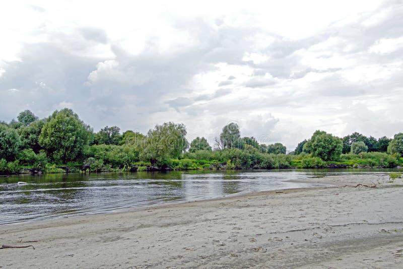 Po środku lata bigos Rzeczny Pripyat Wysoki niebieskie niebo białe chmury Odbicie w rzece fotografia royalty free