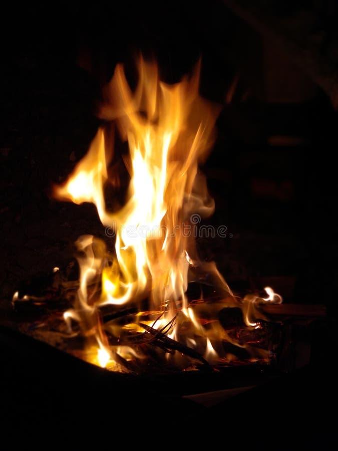 po?ar lasu campingowy p?omie? w górę fotografii ogień przy nighttime zdjęcia stock