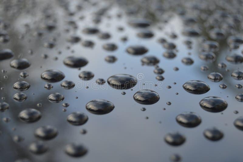 Po deszczu obraz royalty free