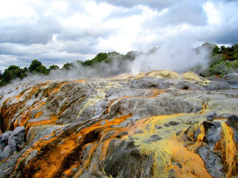 PO-Hutu-Geysir, Rotorua, Neuseeland lizenzfreies stockbild
