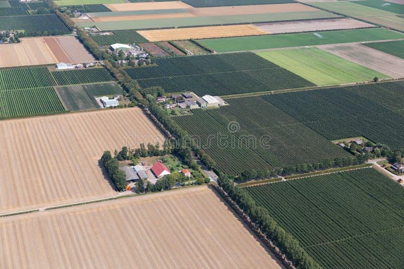 Po'lder holandês da vista aérea com paisagem agrícola e casas da quinta imagens de stock