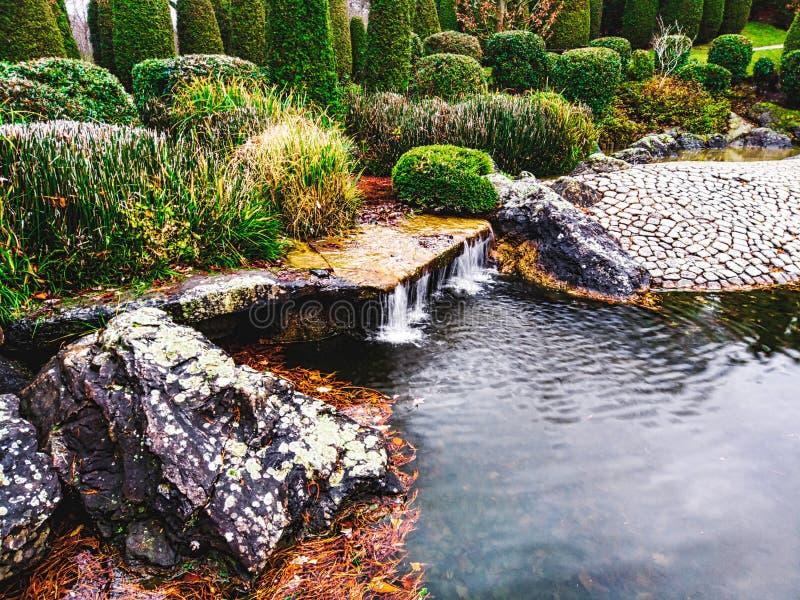 Po prawej stronie jest lustro wody, a po lewej płynie mały wodospad, otoczony luźną roślinnością obraz royalty free